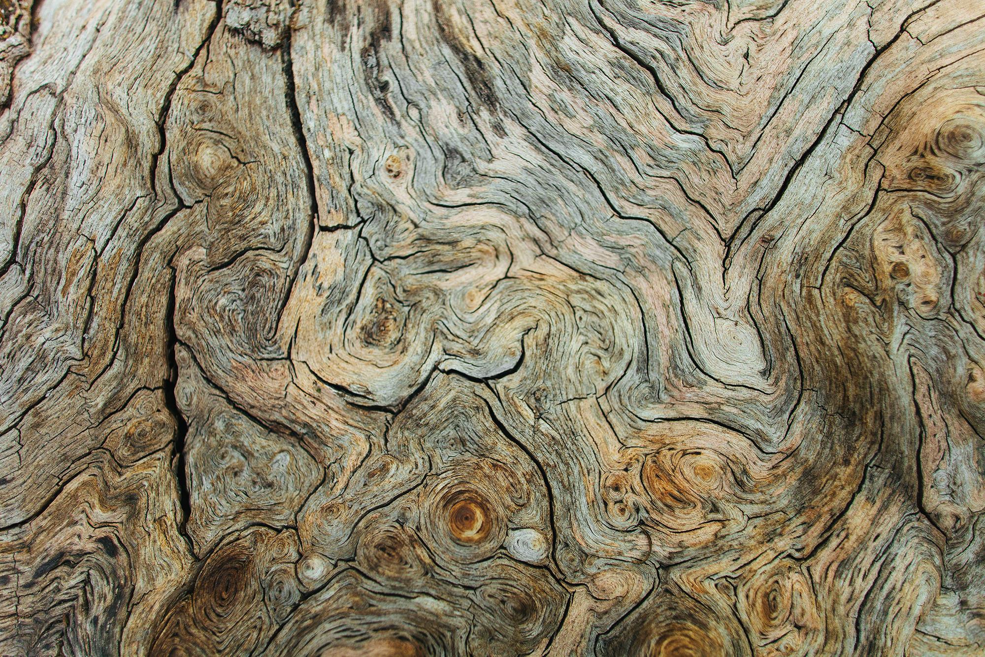 HumanNature WoodPattern1